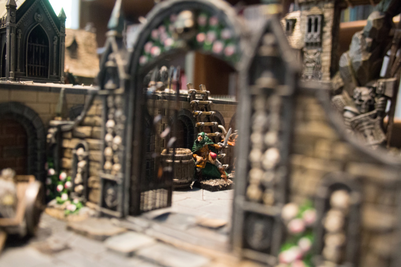 Hellspawn's vision of Mordheim... in another city. - Page 5 Img_8515