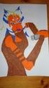 Les artworks d'Embo007 Dsc05919
