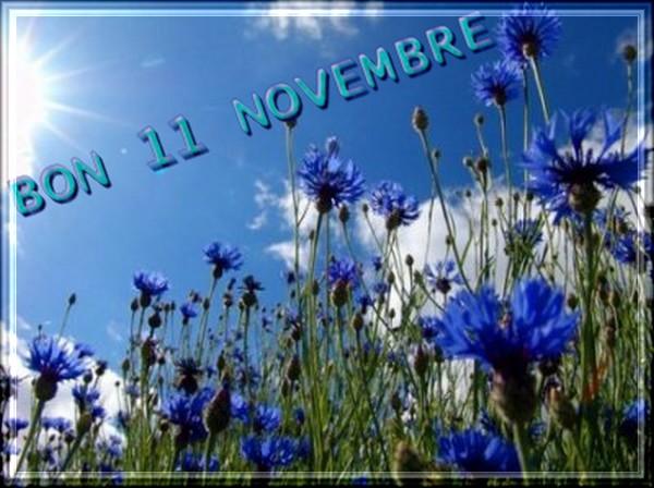 Vendredi 11 novembre 29489310