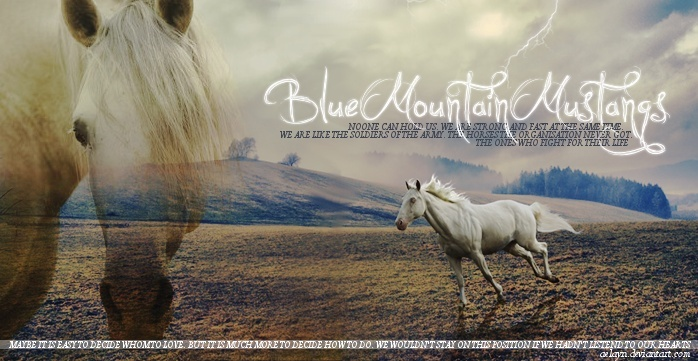BlueMountainMustangs