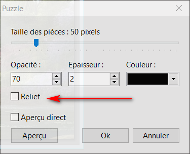 """N° 19 PFS """" Effet Puzzle """" - Page 3 2020-021"""