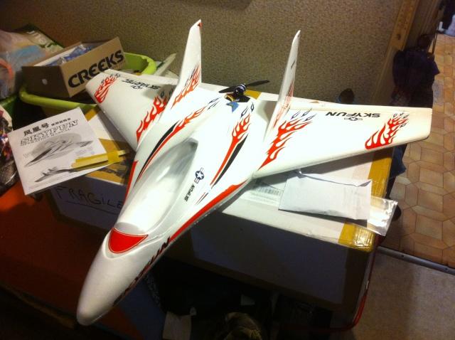 Aile volante SKYFUN de Skyartec Img_2512
