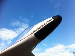 Aile volante SKYFUN de Skyartec Img_2614