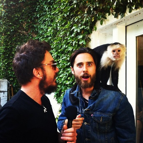 VyRT : A Unique Virtual Social Experience Tumblr59