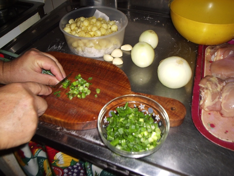 Pollo a la crema de verdeo con papas noisette. P1010041