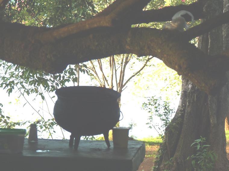 Acampando en Panambí P1280811