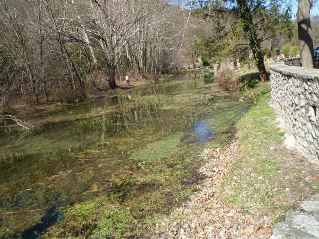 FOIRE AUX PLANTES de BRISSAC (Hérault 34) 02314