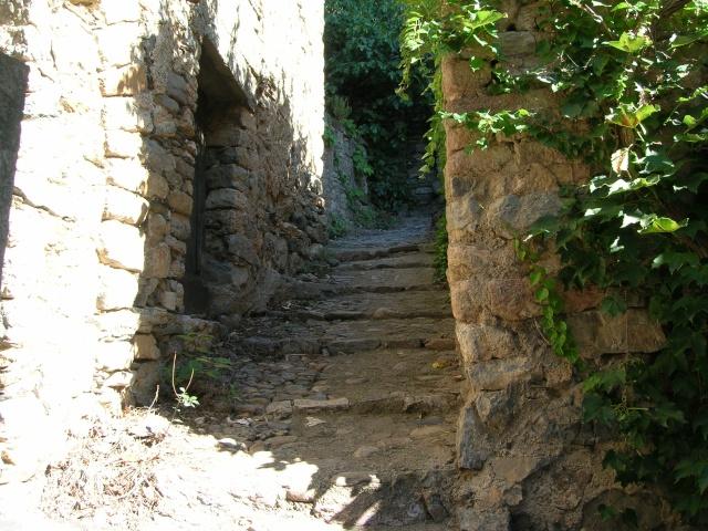 Jardin méditerranéen de ROQUEBRUN Visite20