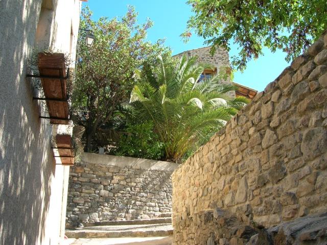 Jardin méditerranéen de ROQUEBRUN Visite21