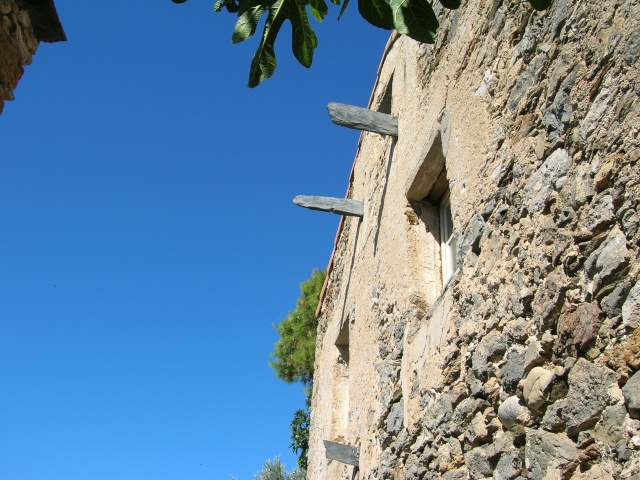 Jardin méditerranéen de ROQUEBRUN Visite23
