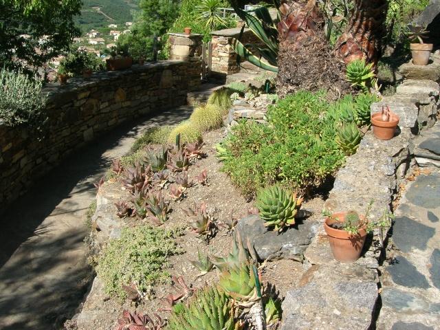 Jardin méditerranéen de ROQUEBRUN Visite34