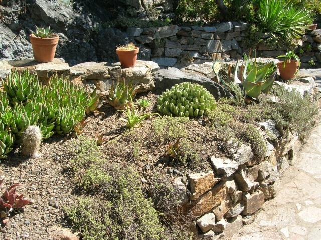 Jardin méditerranéen de ROQUEBRUN Visite35