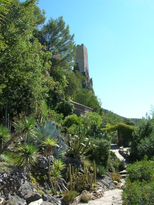 Jardin méditerranéen de ROQUEBRUN Visite40
