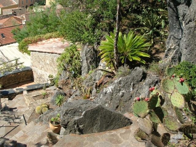 Jardin méditerranéen de ROQUEBRUN Visite42