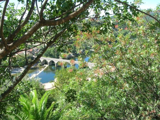Jardin méditerranéen de ROQUEBRUN Visite47