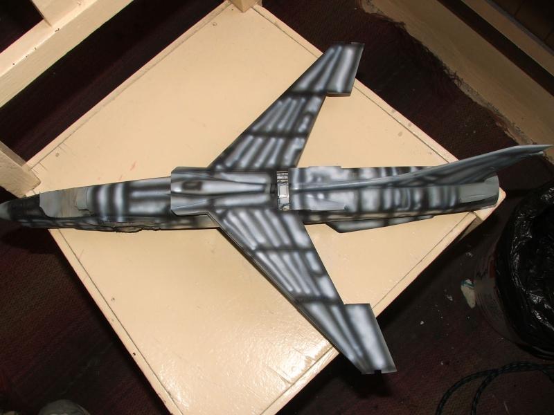 1/32nd F-8E Crusader - Page 8 Dscf2310