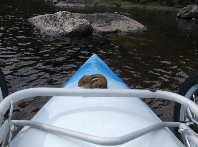 souvenirs d'excursions en kayak 2012 Tiens_10