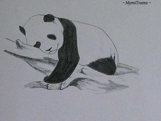 Dessin Facile Animaux Mignon Panda