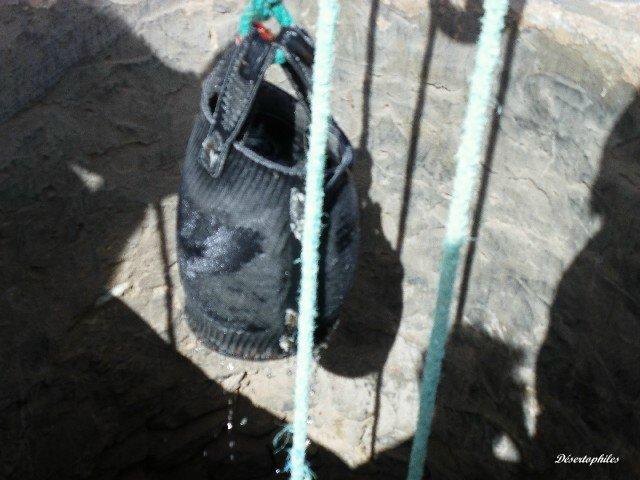 [Maroc Camp/Dernières nouvelles] Camping Tazarine Imgp3811
