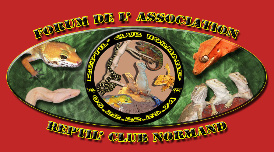 Association Reptil' Club Normand