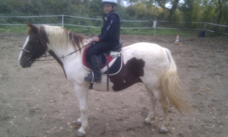 CALINE - OI Poney née en 1996 - adoptée en mars 2012 par Jacques - Page 3 Coco_c10