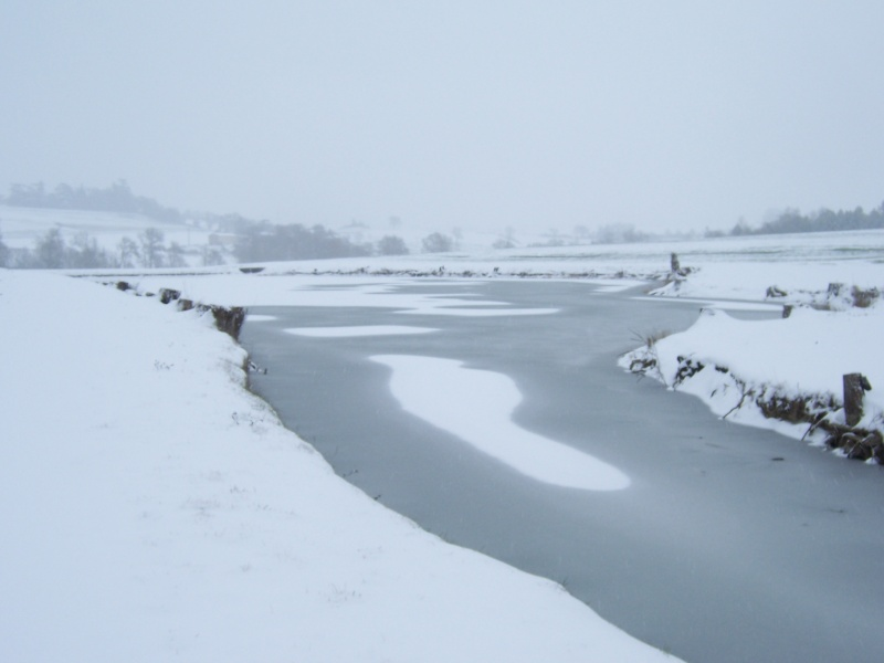 Ca y'est il neige - Page 4 100_5416