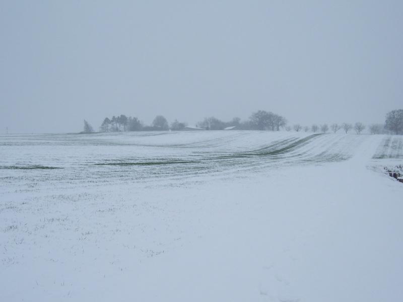 Ca y'est il neige - Page 4 100_5417
