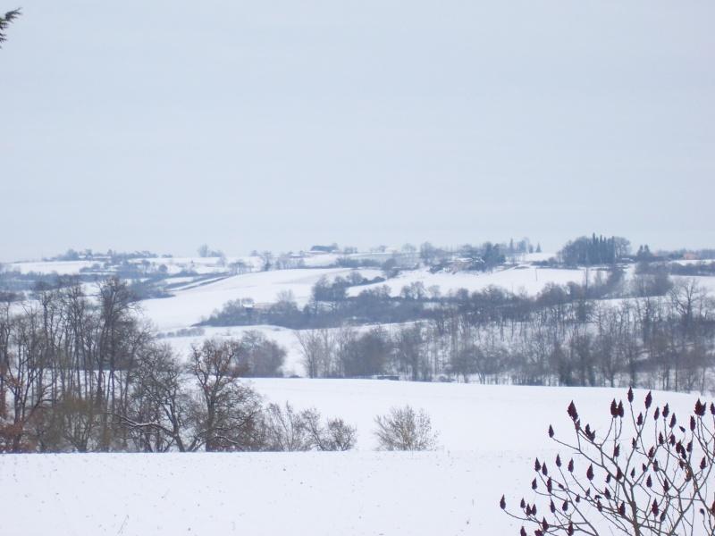 pourvu qu'il tombe de la neige  - Page 2 100_5419