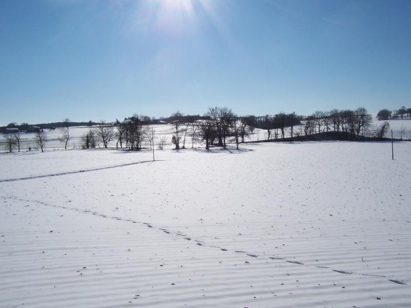 pourvu qu'il tombe de la neige  - Page 3 100_5420