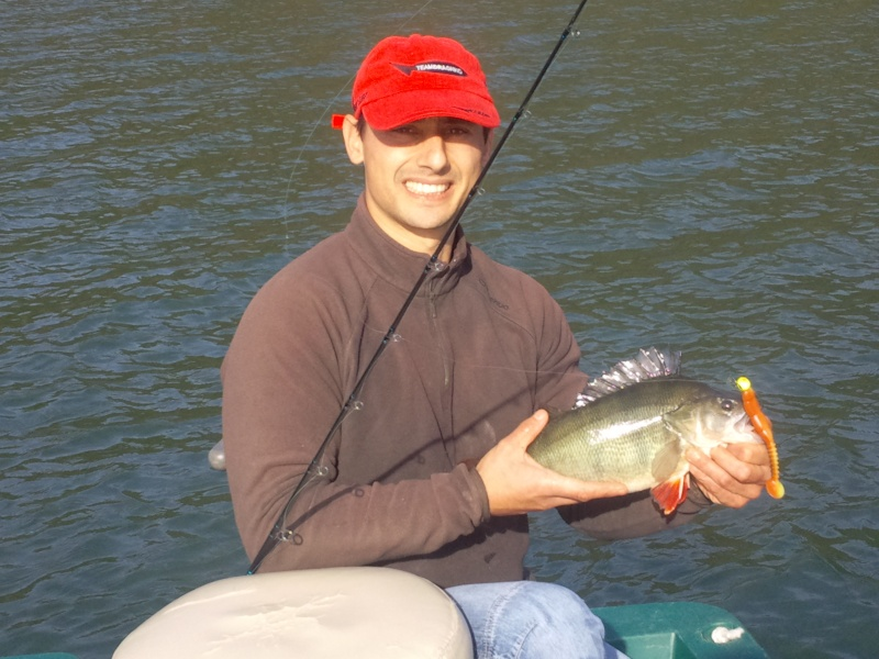 Votre pêche carna de Novembre Photo016