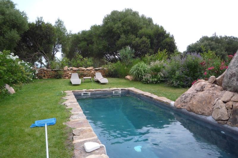 piscine à débordement (besoin de conseils) P1030611