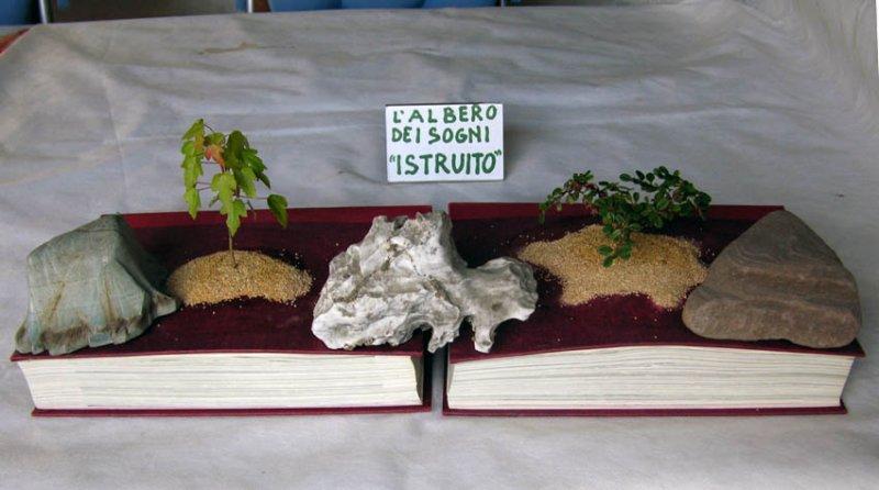 L'ALBERO ISTRUITO Albero10
