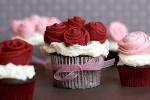 les gâteaux, cakes et tartes