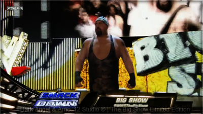 Show WWE Univers - Storyline  3120