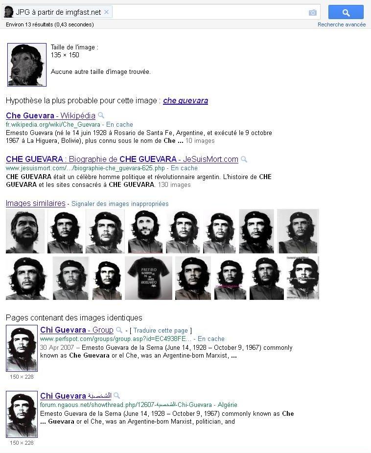 Défis Google: Recherche d'images à partir d'une Image Leche010