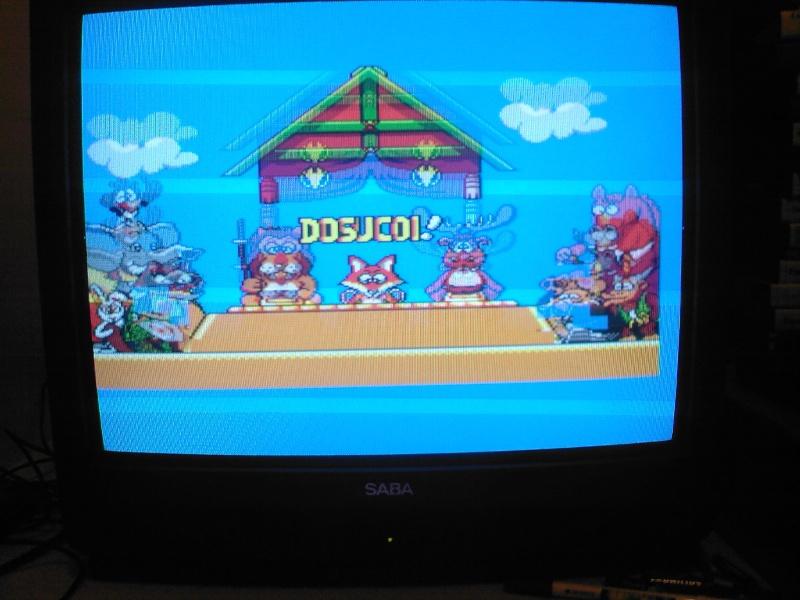 => A quel jeu Master System es tu en train de jouer ? - Page 5 Sp_a0931