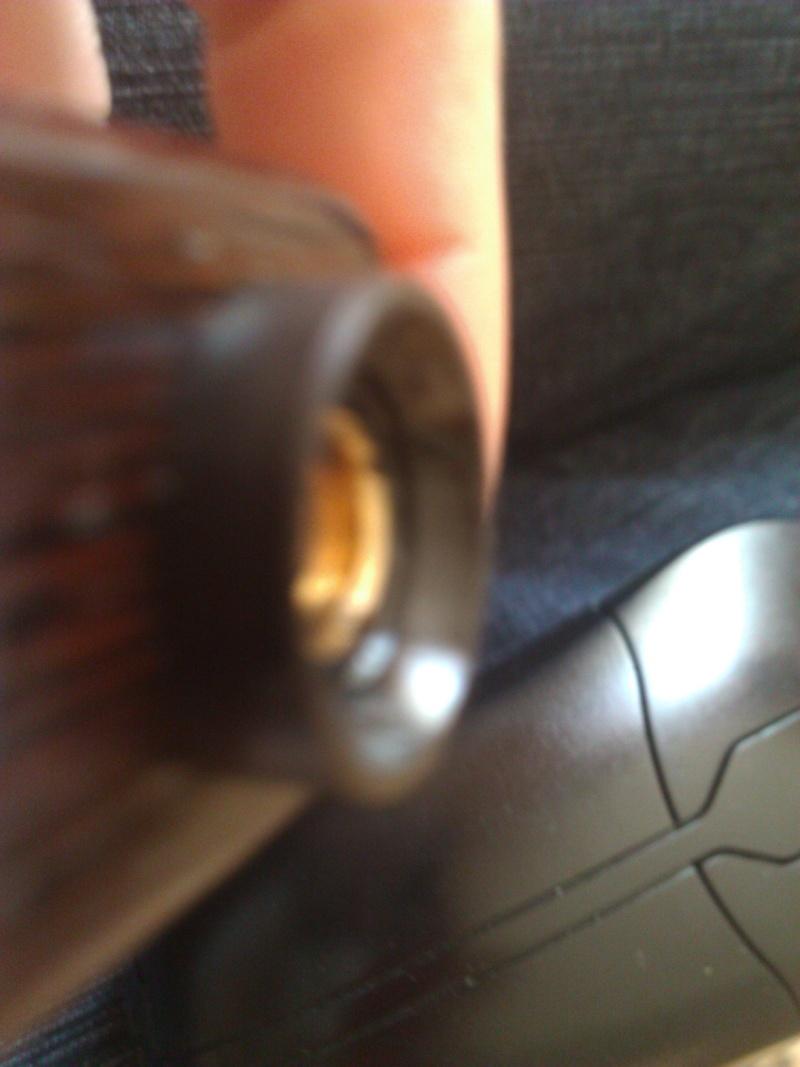 mon mini woodvil  n'est plus seul sa cousine la boggerbox a rejoint la niche : petit comparatif - Page 2 Wp_00122