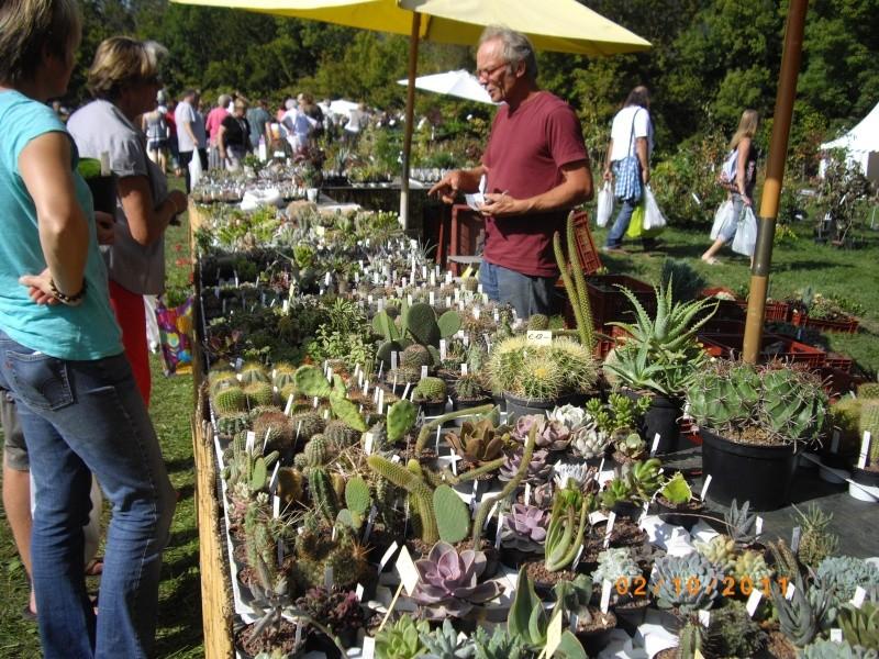 Journées des plantes d'Aiguebelette (73) : 1 et 2 octobre 2011 Imgp6810