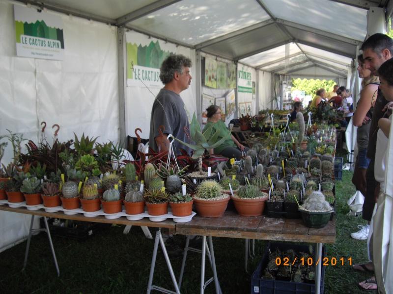 Journées des plantes d'Aiguebelette (73) : 1 et 2 octobre 2011 Imgp6812