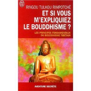 Et si vous m'expliquiez le bouddhisme? 51swkz10