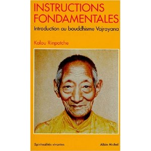 Instructions fondamentales : Introduction au bouddhisme Vajrayana 51wt0g10