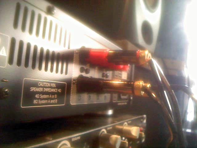 Tangent Exeo Amp: The glacial one Pic11129