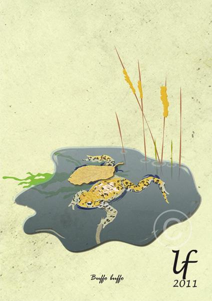 Illustrations animalières Crapau10