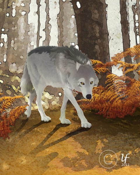 Illustrations animalières Loup10