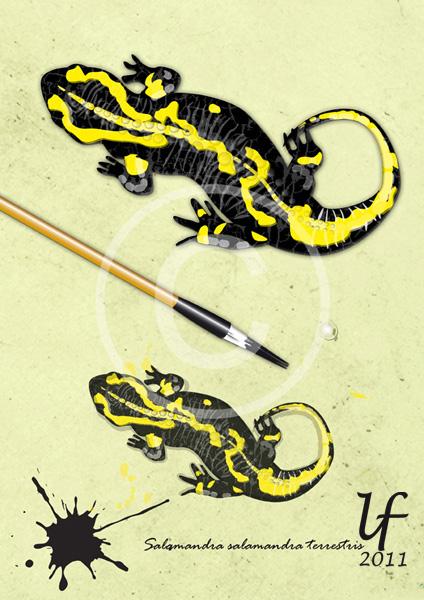 Illustrations animalières Salama10