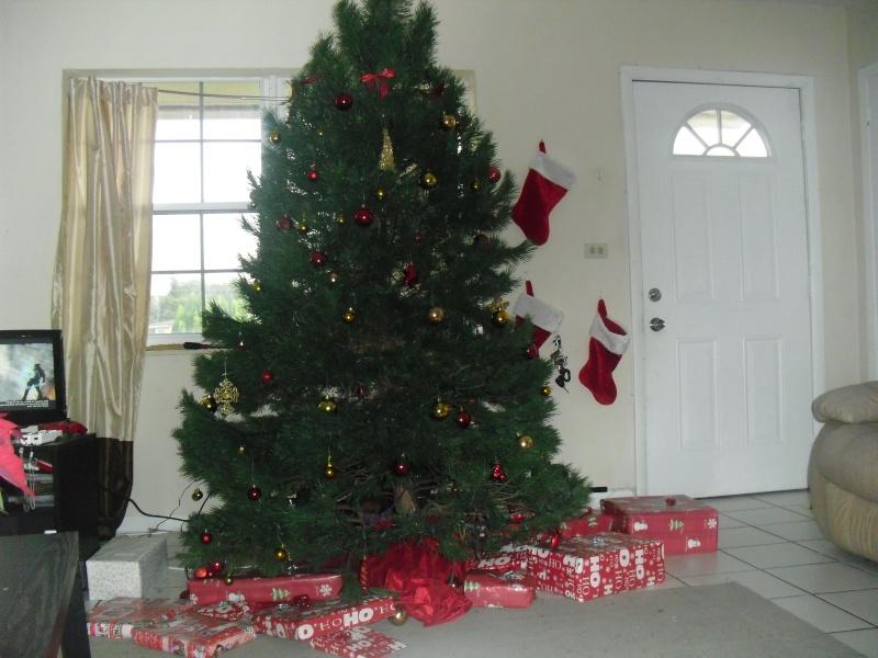 Post your Christmas tree and presents. Cimg0710