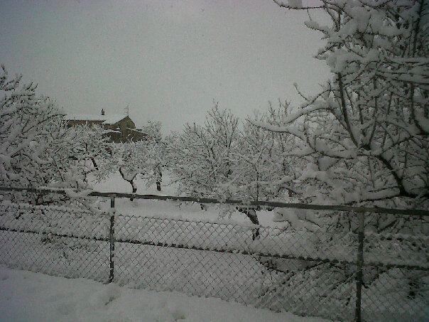 Moochers snow pics 40445810