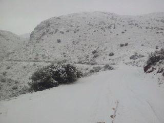 Moochers snow pics 40494810