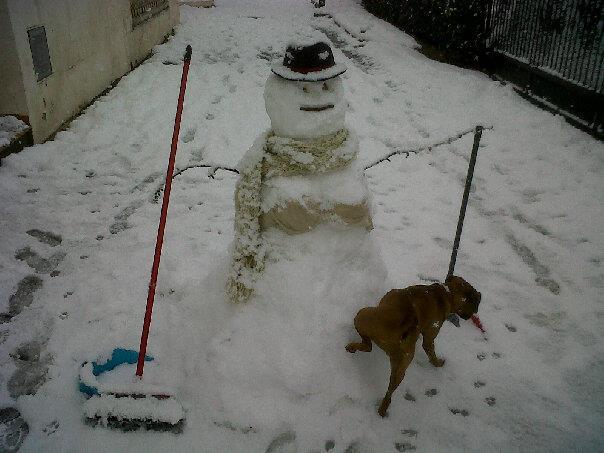 Moochers snow pics 42034810