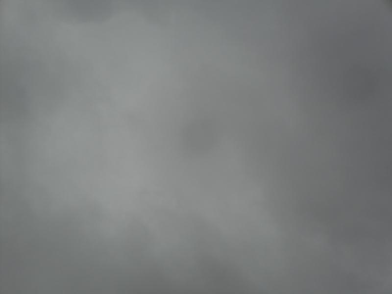 Enfin il pleut ! - Page 3 103_0313